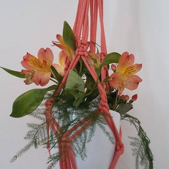 Macrame Plant Hanger New